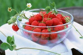 キシリトールやフッ素 は虫歯の予防に非常に効果があります